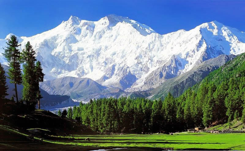 Kashmir Holidays Tour